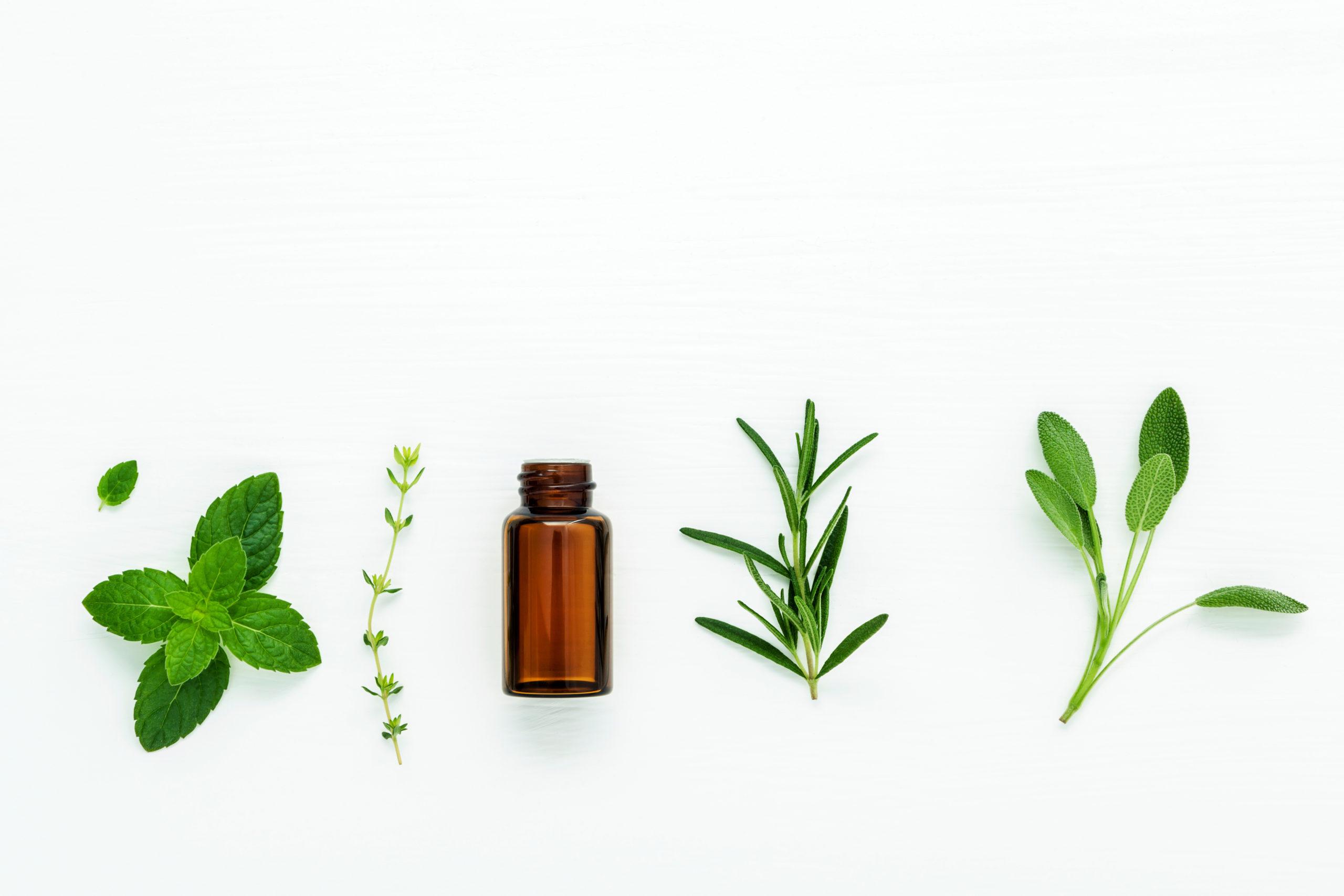 La promotion des médecines et thérapeutiques complémentaires