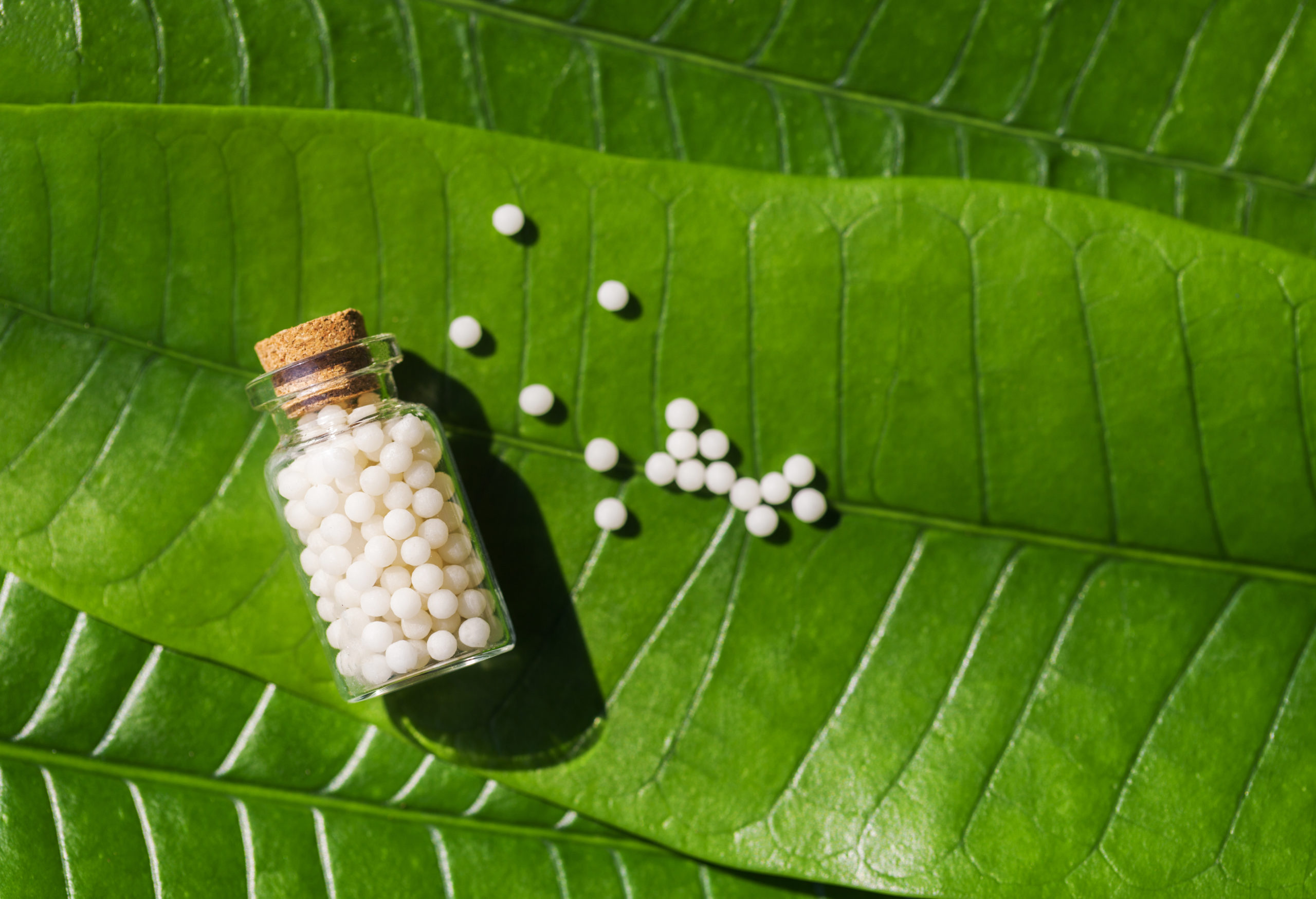 La défense des entreprises du médicament homéopathique