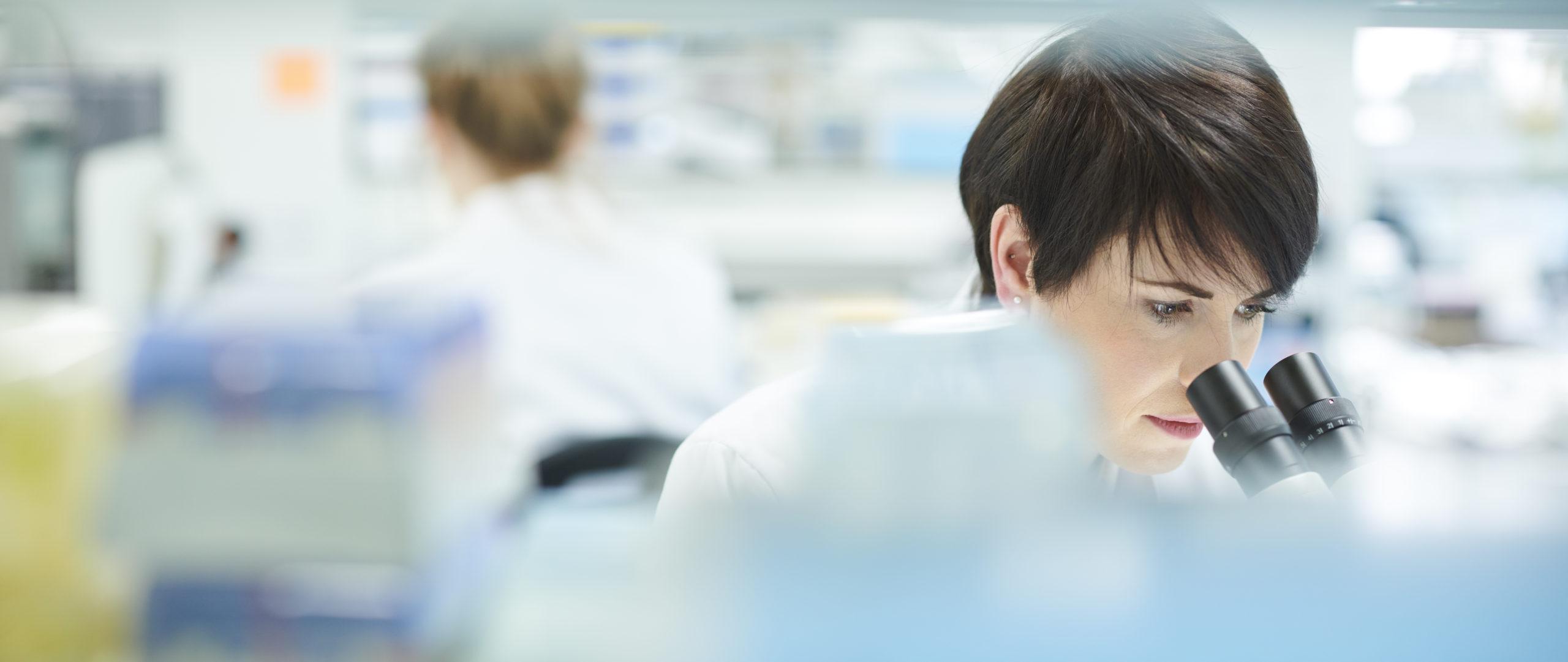 Le pilotage d'une nouvelle étude en homéopathie